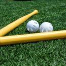 Best Wiffle ball bats